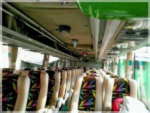 Nikmati Perjalanan Anda Dengan Sewa Bus Pariwisata Murah1