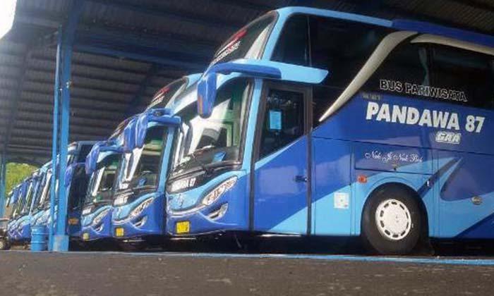 jenis-dan-tipe-pada-bus-pariwisata-jakarta