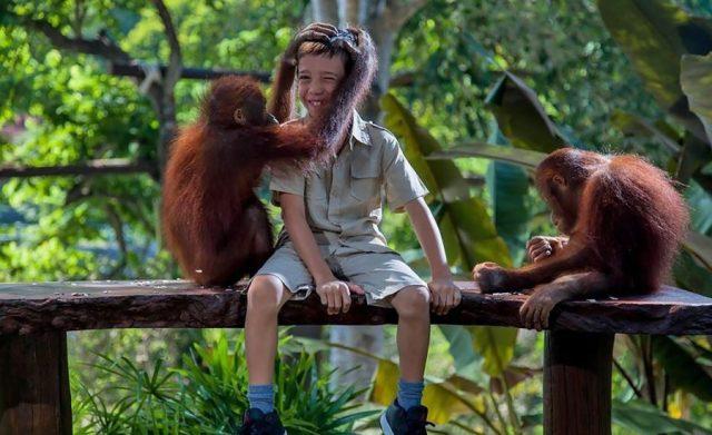 Yuk Travelling ke 6 Kebun Binatang Terlengkap di Indonesia Ini
